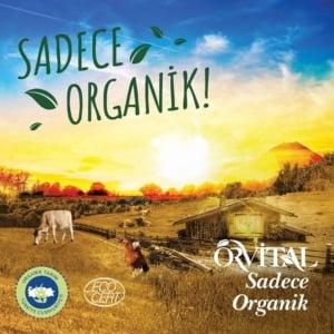 Orvital Organik Ürünleri Özel Kaplumbağa Anaokulunda