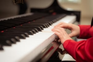 zel Kaplumbağa Anaokulu Piyano Kulubü
